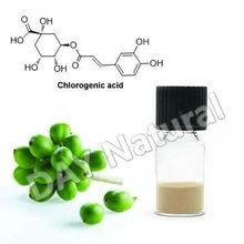 Green Coffee Slim Tea with Chlorogenic Acid 10%-98%