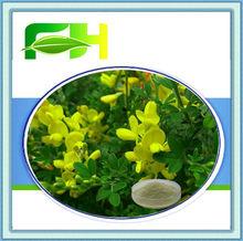 100% Natural Herb Broom Genistein 98%