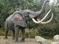animal prehistórico modelo elefante como exposiciones