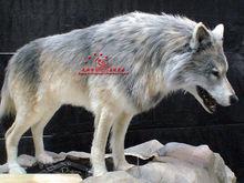 Lifelike Emulational Animal Zoo Equipment Wolf Model