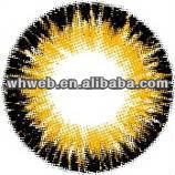 False eyelashes contact lenes/ china soft color contact lenses supplier