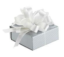 Silver Dots Gift Card Kit