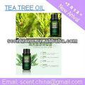 soins de la peau tea tree huile essentielle pour diffuseur de parfum électrique