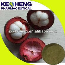 Factory price mangosteen fruit extract/alpha mangosteen extract