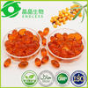 Kosher Certification -- Seabuckthorn Seed Oil Softgel