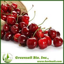 Spray Dried Cherry Fruits Powder