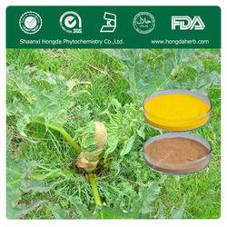 Plant Extract rhein/parietic acid