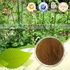 Cimicifuga racemosa extract powder Black Cohosh P.E