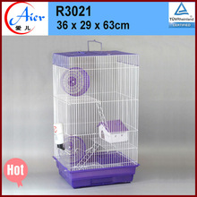 Best prices hamsters for sale