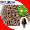 Hot Selling Common Fenugreek Extract 4-Hydroxyisoleucine 10% 20% 40% 95% in EU Market