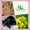 Natural Extract Bee Propolis Powder