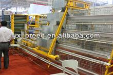 Multi-tier Chicken Cage,Chicken Equipment for hen birds