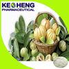 Garcinia Cambogia Extract for Capsule/Powder Form