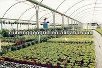 plastic film for greenhouse