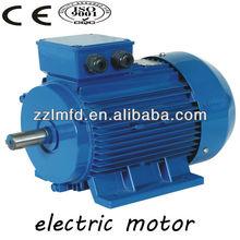 global warranty! good quality of three-phase 12v electric vehicle motor