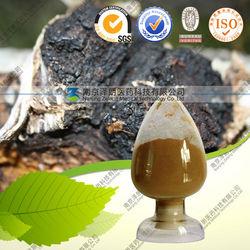 Polysaccharide 10%-40% /Chaga Mushroom Extract