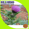 Pharmaceutical ingredient Silymarin/Milk Thistle Extract products 80% 30%HPLC