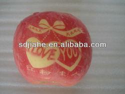 high-quality fuji apple with love