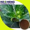 Natural damiana extract/damiana leaf extract powder
