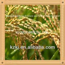 ammonium nitrate compound fertilizer