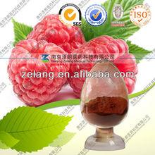 organic Raspberry extract 10:1 20:1
