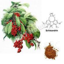 Schisandra Berries Plan extract