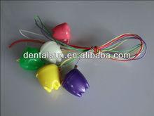 Colorful Orthodontic Dental Retainer Case for Children