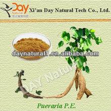 2012 New Arrival 40% Kudzu Flavones HPLC/UV (Pueraria Extract Herb Medicine)