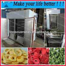 2013 China newest fruit and vegetable dehydrator/fruit and vegetable drying machine