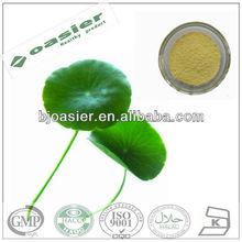 Natural GMP hot sale gotu kola extract powder Total Triterpenes