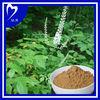 100% Natural black cohosh powder
