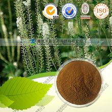Natural Herb Cimicifuga racemosa extract