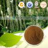 Triterpene Glycosides 8% Cimicifuga racemosa extract