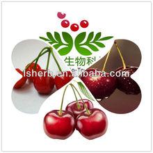 Acerola Cherry Powder Natural Vitamin C 17% 25%