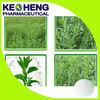 Bulk Pure Stevia Extract