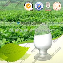 Stevia rebaudiana (Bertoni) Hemsl Stevia extract