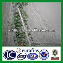 ply netting bird