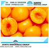 Peach Syrup processing line