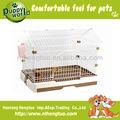 Petit élevage cage chien avec toit