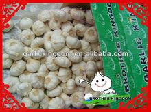 wholesale garlic price,natural garlic,garlic powder