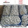 China natural fresh white garlic 2013 latest price Shandong