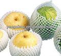 frutas frescas da época do pacote de compensação de manga