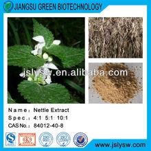 Nettle Extract/Nettle extract root leaf extract