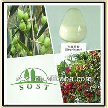 Natural Oleanolic Acid Powder Herbal Extract