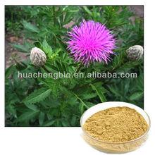 100% Natural Russian Leuzea Extract 5%~90% Ecdysterone UV