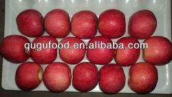 Good quality fresh Fuji Apple