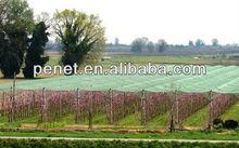 Hdpe 100% reti di protezione frutta albero con BASF uv