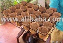 Coconut Nursery Pots