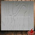 Patrón caliente de acero inoxidable placa de prensa( mwd919)