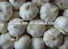 2013 new crop high quality fresh pure white garlic&&nomal garlic for hot sale